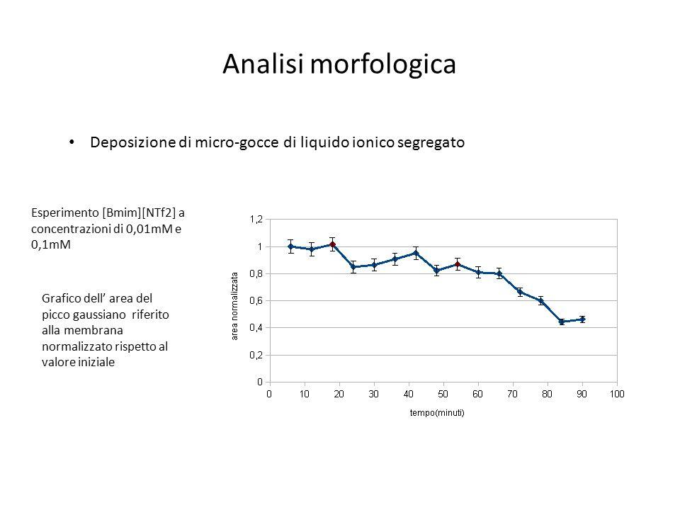 Analisi morfologica Deposizione di micro-gocce di liquido ionico segregato. Esperimento [Bmim][NTf2] a concentrazioni di 0,01mM e 0,1mM.